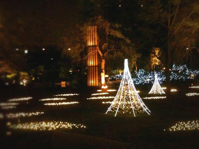 街はクリスマス_b0102247_074425.jpg