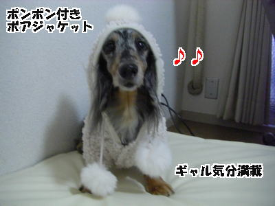 d0020869_122045.jpg