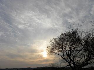 ある日の夕空_f0144003_17405568.jpg