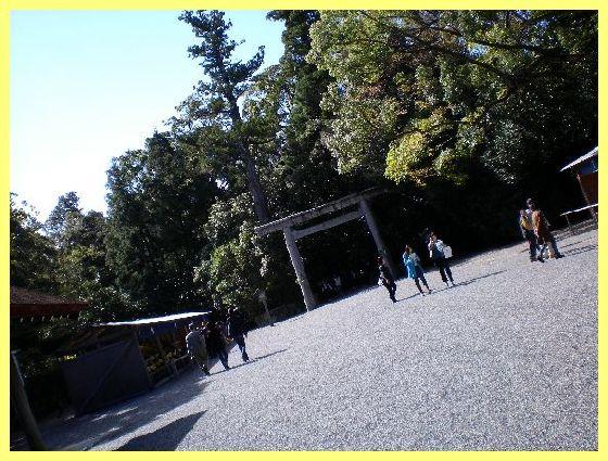 f0101613_2211446.jpg