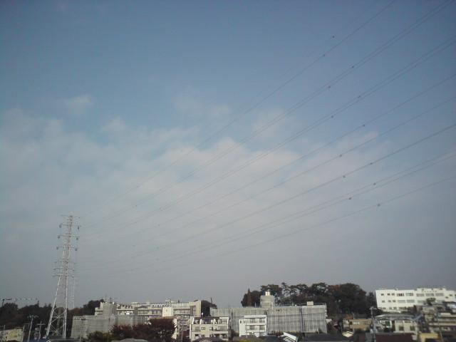 今日の空とコマト_d0038951_1335169.jpg