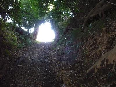 秋の田舎の散歩路_f0193752_2104730.jpg