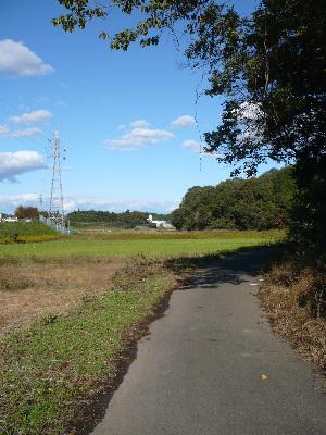 秋の田舎の散歩路_f0193752_215960.jpg