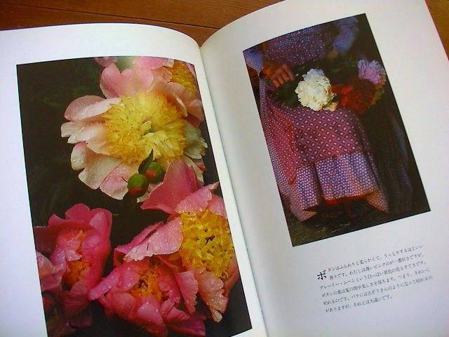 ターシャの本。_e0060555_17272247.jpg
