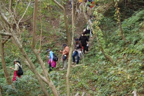2009年11月度「大人の林間学校」_c0108460_22412244.jpg