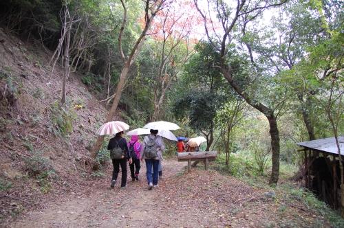 2009年11月度「大人の林間学校」_c0108460_22472665.jpg