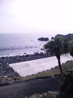 ガラガラ海洋公園_c0207861_1046548.jpg