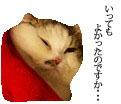 c0201577_822410.jpg