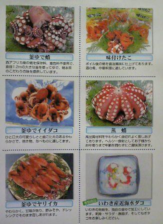 タコさんfromFranさん♪ ~Gift from Fran-san♪~_c0105183_222413.jpg