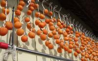 干し柿作りが終わって。_d0026905_13264077.jpg
