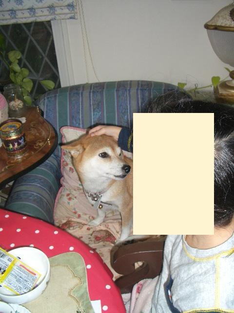 f0024310_1913636.jpg