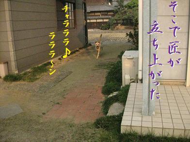 b0151748_1227566.jpg