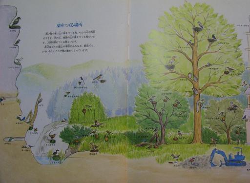 鳥の巣の本_e0160269_15111959.jpg