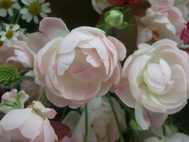 オークリーフ(バラとポプラスベリーの花束)_f0049672_18223221.jpg