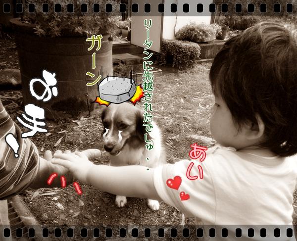 c0174773_1245147.jpg