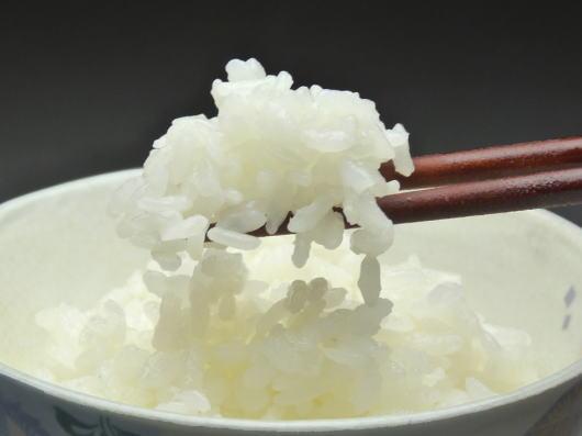 おいしいお米が入荷しました_e0188574_22172436.jpg