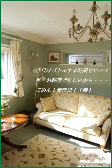 d0104926_321448.jpg