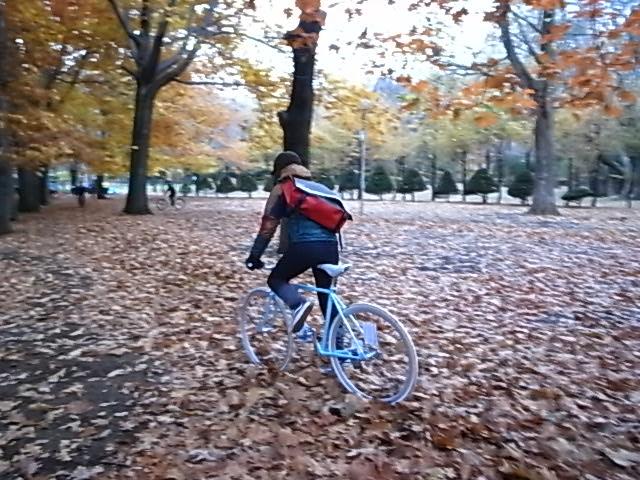 秋っぽい ていうか冬_e0173533_19155175.jpg