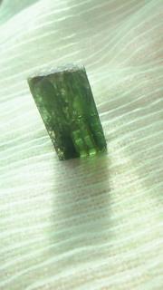 緑の王国_c0157242_3593249.jpg