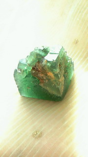 緑の王国_c0157242_49305.jpg