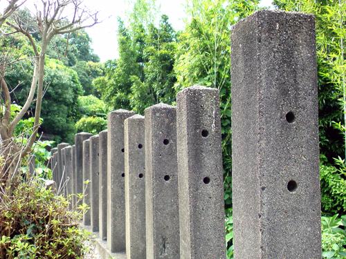 2009年『鳥取砂丘らくだはニンジンを食べるのか?実証の旅』【その1】_c0215063_227438.jpg