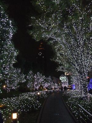 新宿サザンテラスのイルミネーション_d0044093_23263439.jpg