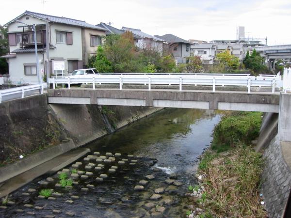 小川にウヨウヨの鯉・・・・・白髭_d0138130_9185999.jpg