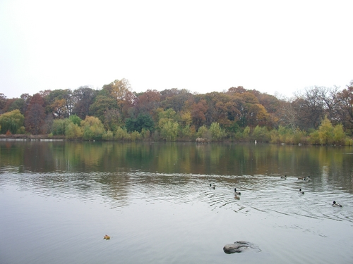 Kissena Parkで紅葉狩り_c0064534_118597.jpg
