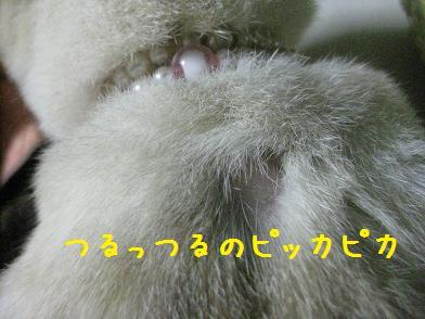 b0151748_12274833.jpg
