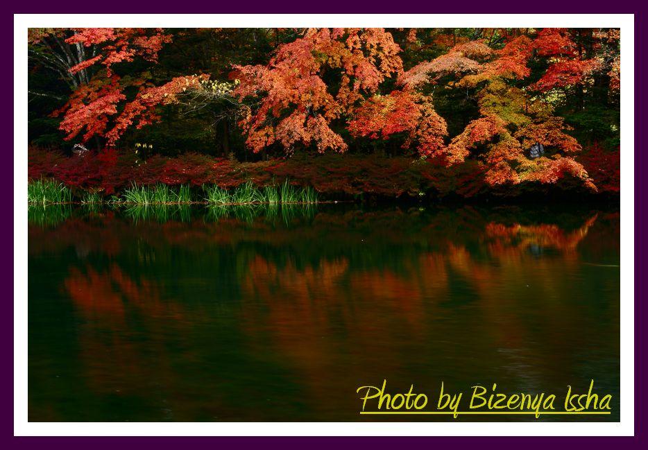 『秋らしく』_d0086248_6475932.jpg