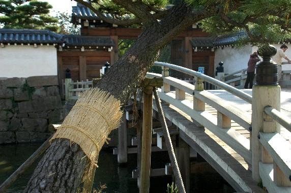 和歌山城公園にて_b0093754_00213.jpg