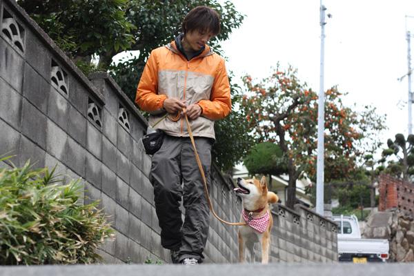 だいちゃん&イケメン訓練士_b0123371_3301554.jpg