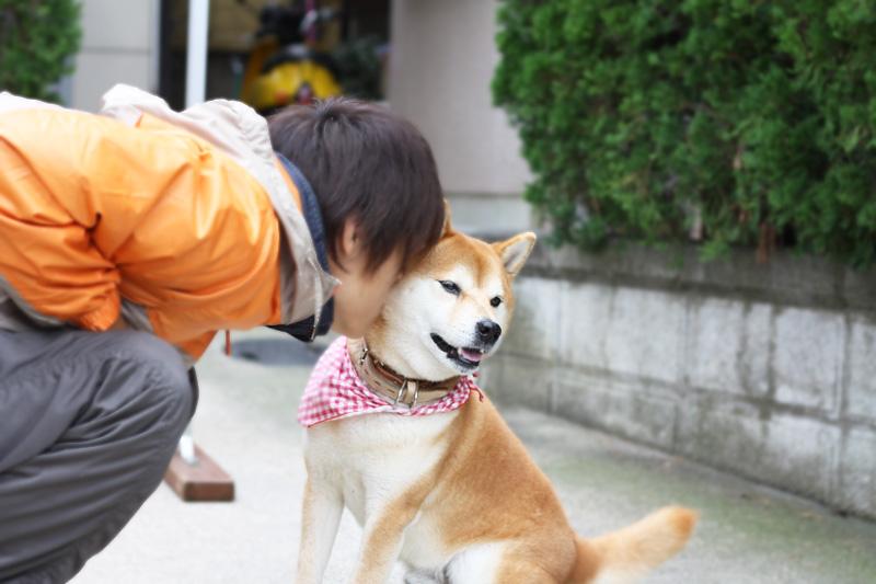 だいちゃん&イケメン訓練士_b0123371_3333684.jpg