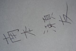 愚息愚回答シリ〜ズ2009_f0164187_8281179.jpg
