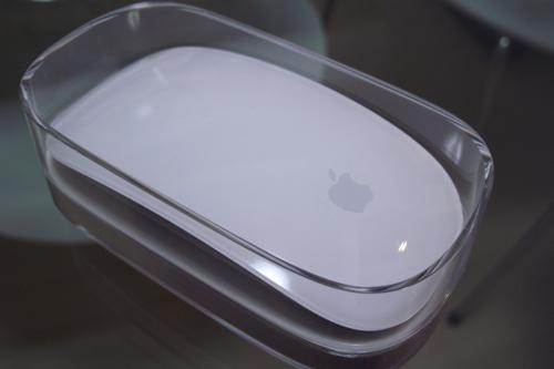 きれいなマウスが届きました。_a0006744_10524868.jpg
