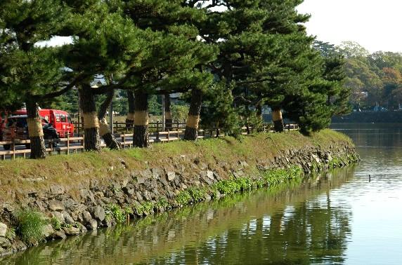 和歌山城公園にて_b0093754_003174.jpg