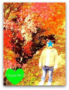 c0220884_14371696.jpg