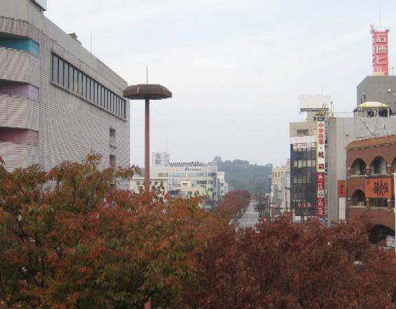 彦根城を歩く_c0013687_1129289.jpg