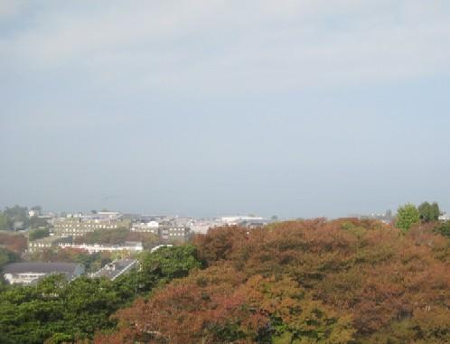 彦根城を歩く_c0013687_11313822.jpg