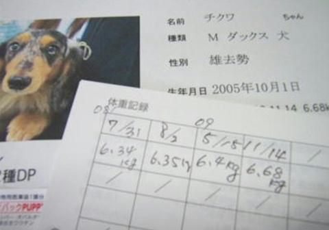f0195891_165929.jpg