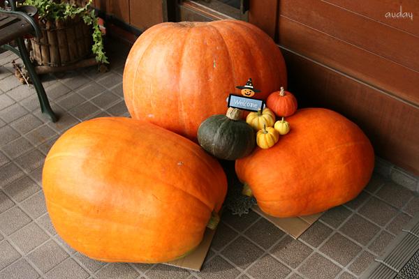 おばけかぼちゃ♪_c0048494_17525727.jpg