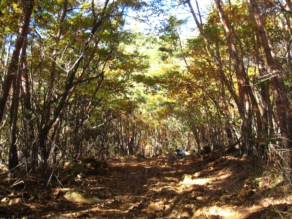 散策へ〜山中_f0141609_19281883.jpg