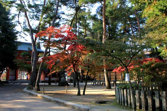 今宮神社_e0048413_19483271.jpg