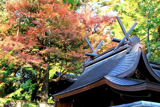 今宮神社_e0048413_19484799.jpg