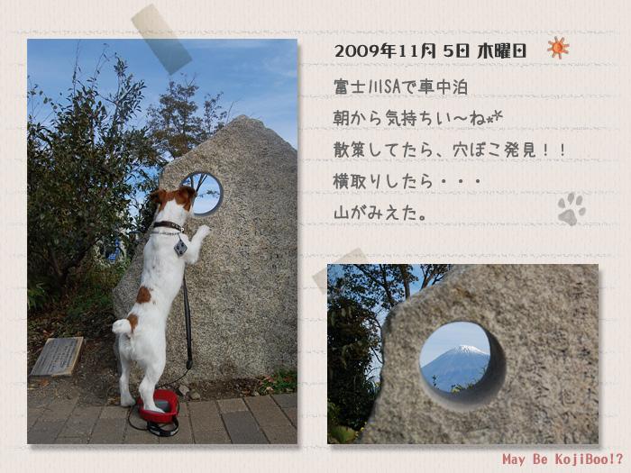 b0040323_14465164.jpg