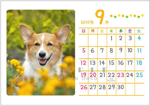 卓上カレンダー制作します_d0102523_19185674.jpg