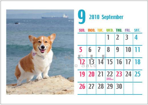 卓上カレンダー制作します_d0102523_1919403.jpg