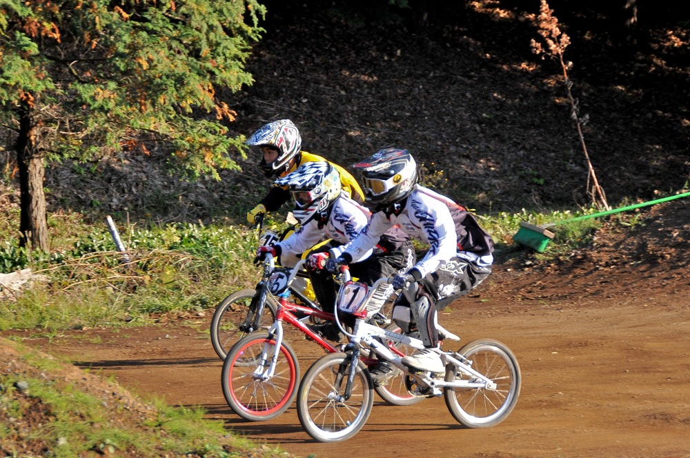 2009JOSF緑山11月定期戦VOL1:BMXエキスパート・エリートクラス決勝_b0065730_20243215.jpg