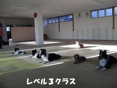 f0186040_23182119.jpg