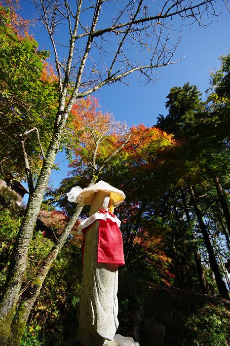 2009紅葉 Ⅴ 金蔵寺_f0152550_1746694.jpg